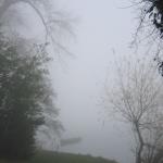 den_bosch_fog2