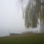 den_bosch_fog4